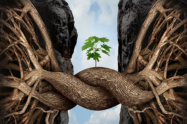 bigstock-Unity-Growth-Concept-82915955-v1